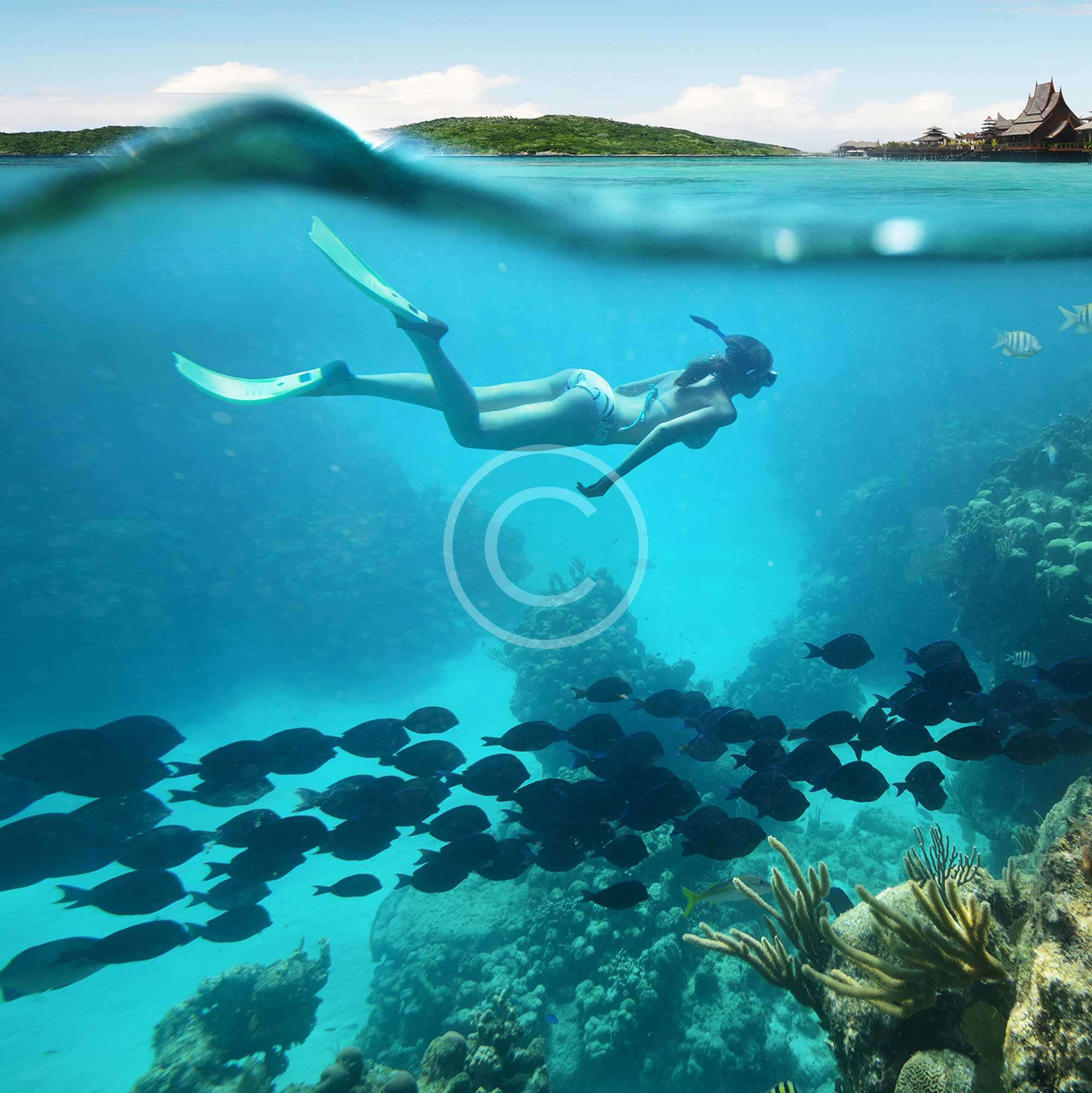 7 Reasons to Become a PADI Rebreather Diver